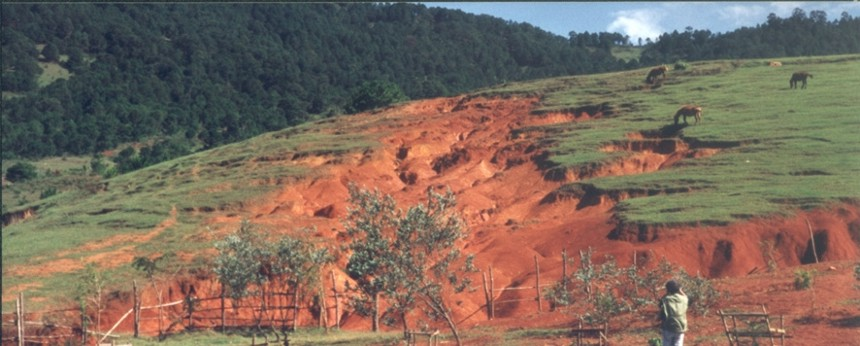 Terrain bouleversé par le surpâturage et la destruction de la forêt, Vietnam