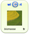 LogoWicriBiomasseJuillet2011Fr.png