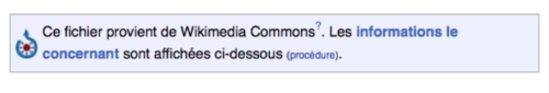 ExempleWikipediaBandeauCommons.png