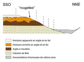 Distribution des sols sur les versants en Brie laitière