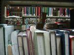 Library Pengo.jpg